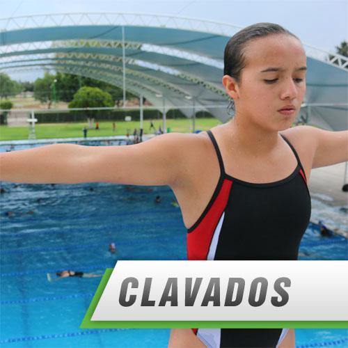 CLAVADOS